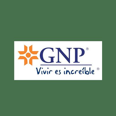 nova_logos_0036_gnp